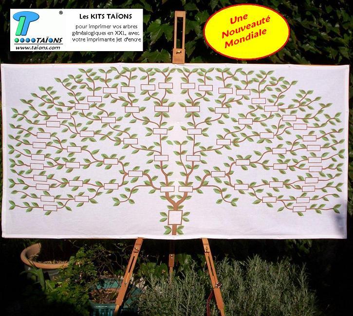 Ta ons les arbres imprimez vos g n alogies en xxl - Idee arbre genealogique original ...