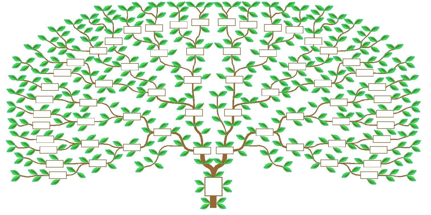 kit ta ons arbre g n alogique ascendant 6 g n rations. Black Bedroom Furniture Sets. Home Design Ideas